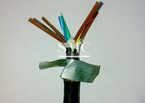 Hot Dip Galvanized Steel Strip For Armored Cable Price